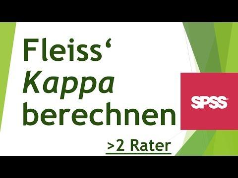 Fleiss' Kappa in SPSS berechnen - Daten analysieren in SPSS (71)